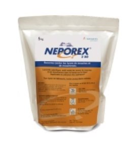 neporex-catalogue